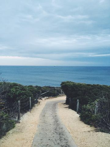 An image of the path to Bell's Beach, Torquay