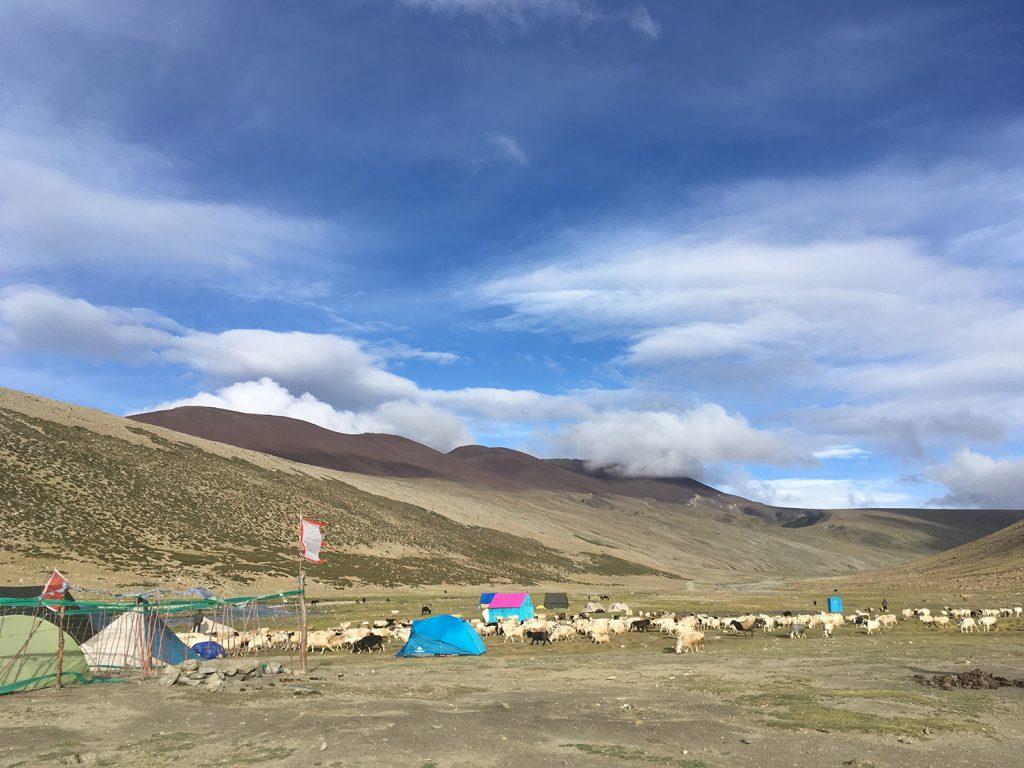 Real.m Travels Himalaya 4